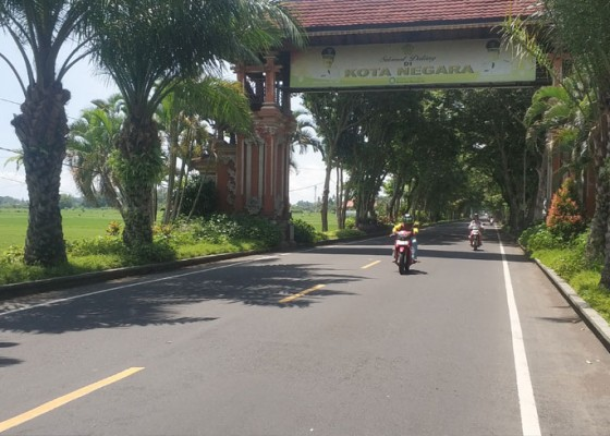 Nusabali.com - rimbun-palma-di-gerbang-kota