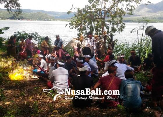 Nusabali.com - kemarin-digelar-upacara-pesapuh-sapuh-dan-ngayuh
