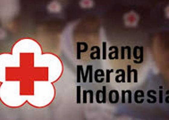 Nusabali.com - 20-relawan-pmi-bali-berangkat-ke-sulteng
