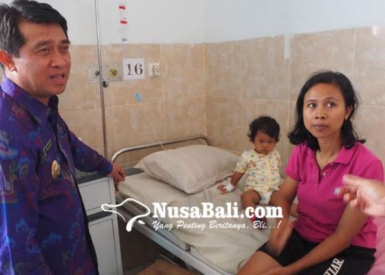 Nusabali.com - kasus-db-kembali-mewabah