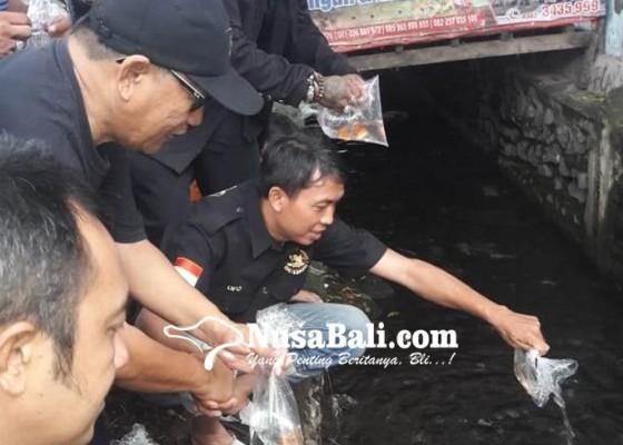 Nusabali.com - seribuan-bibit-ikan-dilepas-di-sungai-kampung-anyar