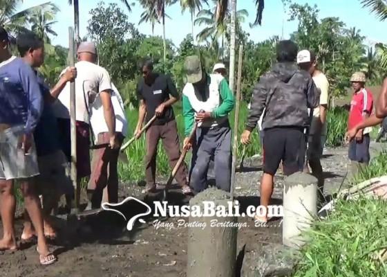 Nusabali.com - krama-subak-susut-portal-jalan