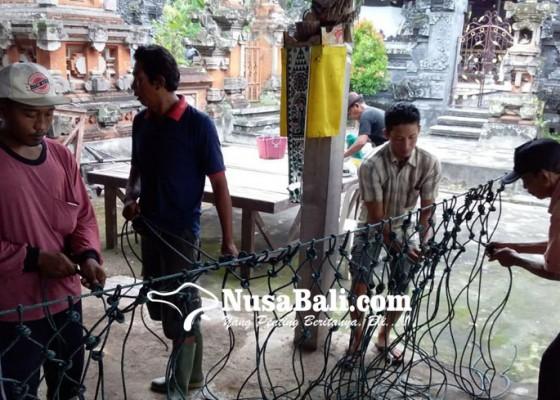 Nusabali.com - subak-swadaya-tangani-kerusakan-saluran-irigasi-di-sungai-biluk-poh