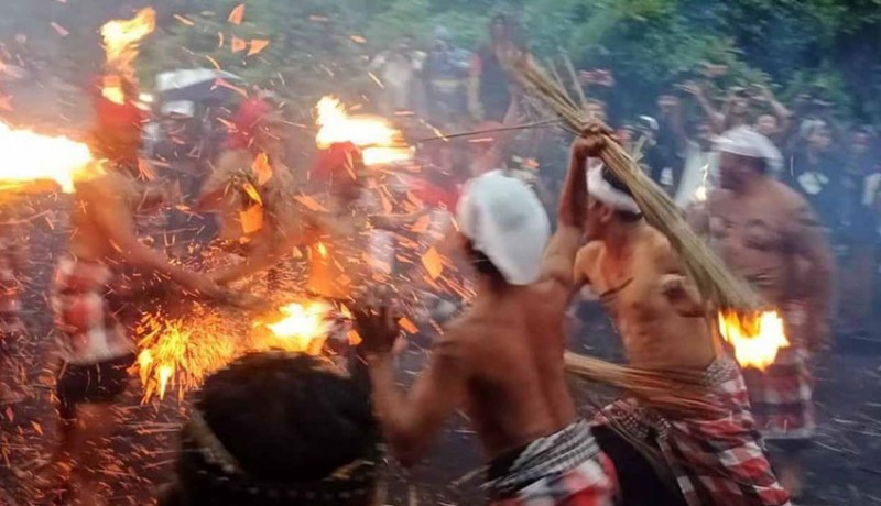 www.nusabali.com-ritual-siat-api-krama-desa-pakraman-duda-berperang-dengan-senjata-prakpak