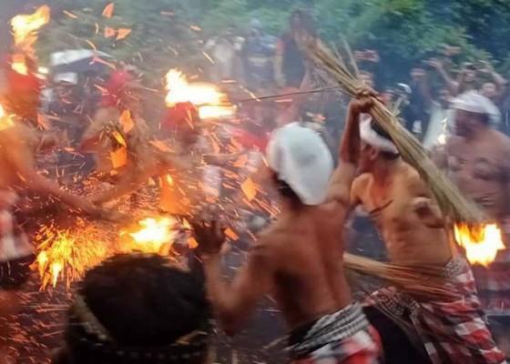 Nusabali.com - ritual-siat-api-krama-desa-pakraman-duda-berperang-dengan-senjata-prakpak