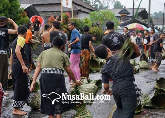 Nusabali.com - jelang-usaba-dimel-dua-kelompok-pemuda-terlibat-siat-sarang