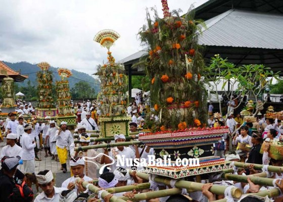 Nusabali.com - usaba-dimel-krama-naur-sesangi-51-buntilan