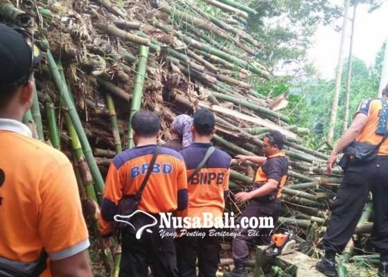 Nusabali.com - bpbb-tangani-bencana-di-lima-tkp