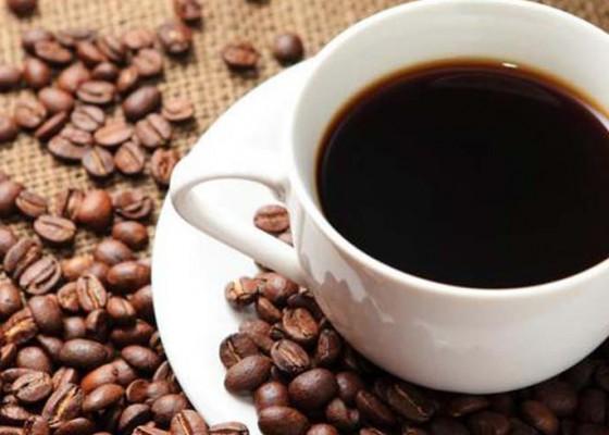 Nusabali.com - kopi-kintamani-diorientasikan-ekspor