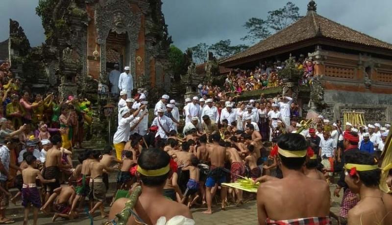 www.nusabali.com-ritual-nuhu-ratusan-anak-berebut-sarana-upacara
