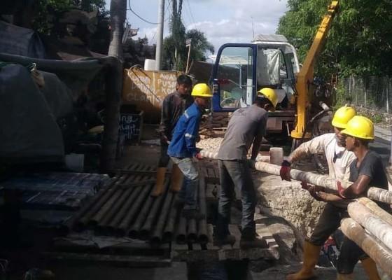 Nusabali.com - dinas-lhk-stop-proyek-penanaman-kabel-listrik