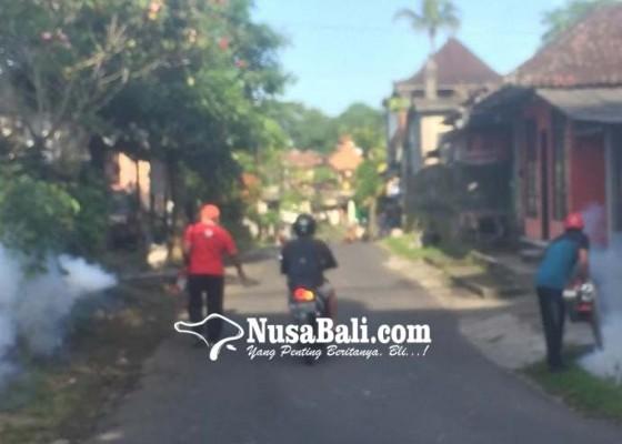 Nusabali.com - awal-2019-63-orang-suspek-demam-berdarah