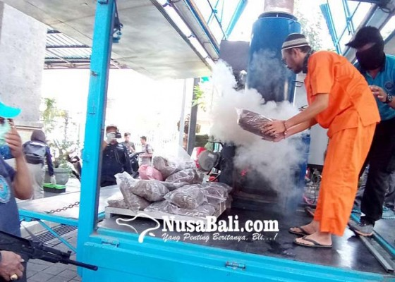 Nusabali.com - bnnp-bali-musnahkan-18-kg-ganja-kering