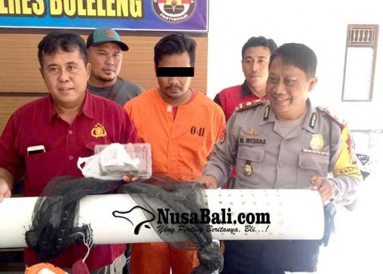 Nusabali.com - durhaka-tambak-udang-majikan-dikuras