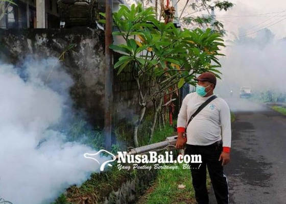 Nusabali.com - kasus-dbd-di-banjar-pande-petugas-gelar-fogging