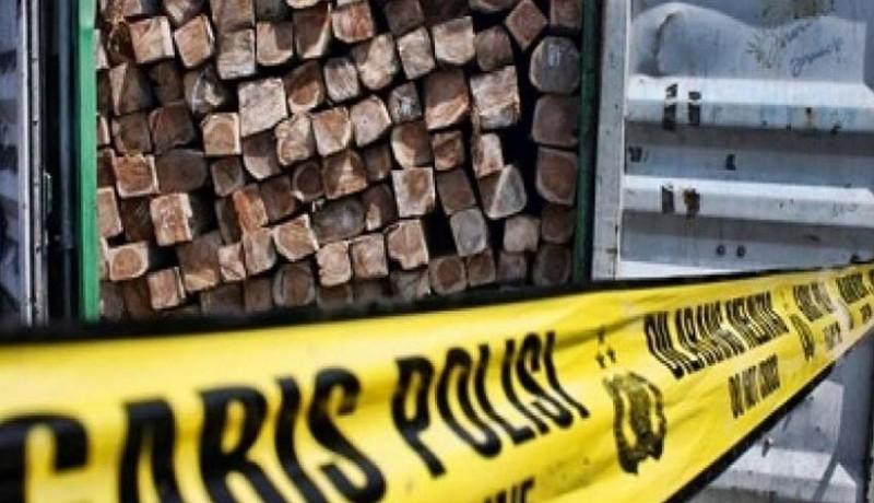 www.nusabali.com-pencuri-kayu-pinus-hutan-diringkus