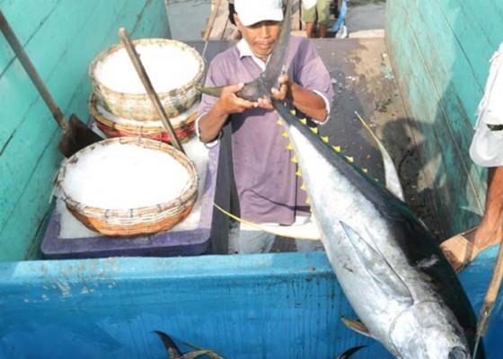 Nusabali.com - ekspor-ikan-dan-udang-ke-jepang-turun