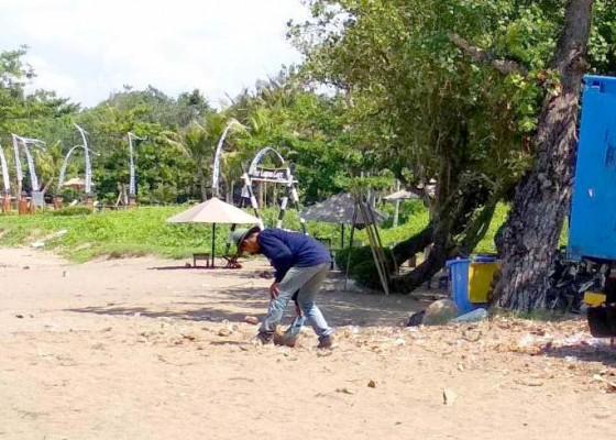 Nusabali.com - pantai-berawa-dibersihkan-dari-sampah-kiriman