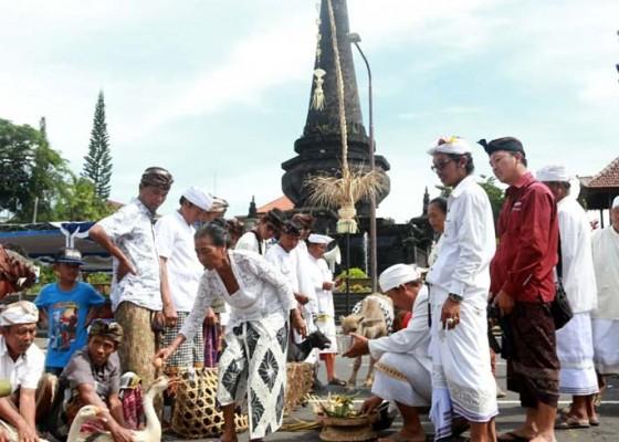 Nusabali.com - mapepada-hewan-tawur-di-catus-pata-klungkung