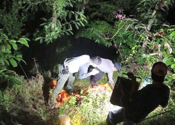 Nusabali.com - tengkorak-manusia-ditemukan-di-perkebunan