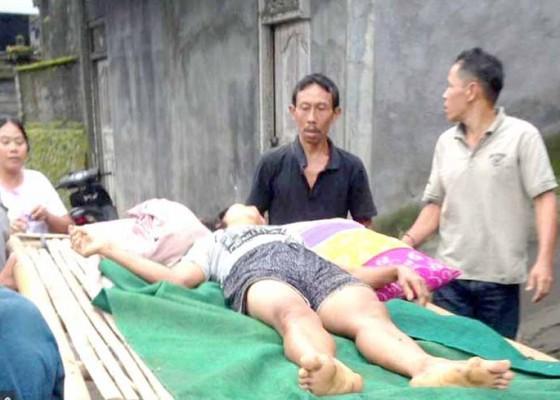 Nusabali.com - irt-terjatuh-dari-pohon-kelapa-patah-tulang-pinggang