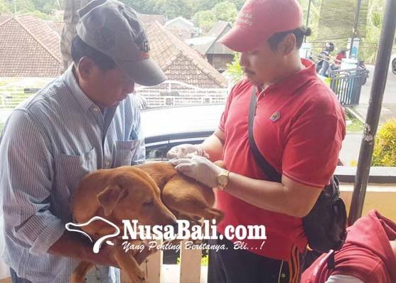 Nusabali.com - vaksinasi-massal-prioritaskan-zona-merah