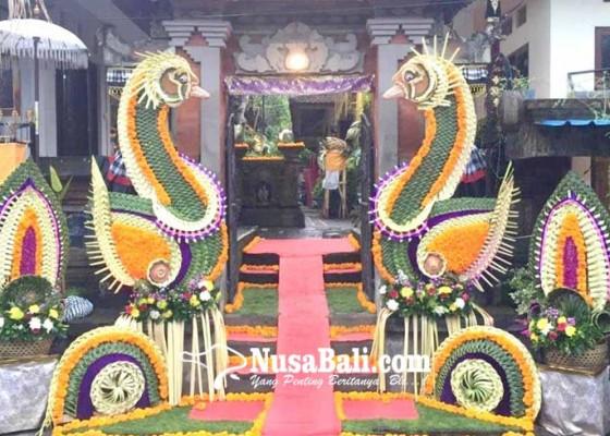 Nusabali.com - gayor-berbahan-alami-kian-diminati