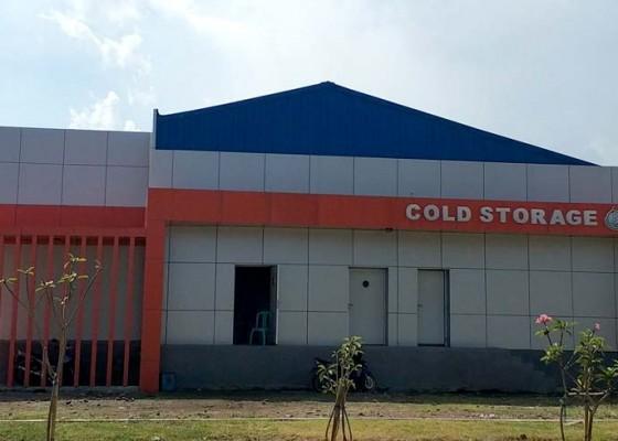 Nusabali.com - tpi-dan-cold-storage-belum-dioperasionalkan
