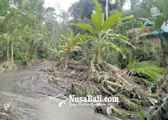 Nusabali.com - jalan-setapak-hancur-diterjang-banjir-bandang