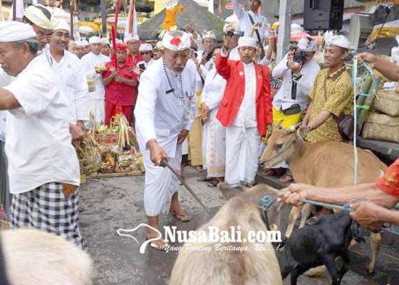 Nusabali.com - mapepada-panca-walikrama-di-penataran-agung-besakih