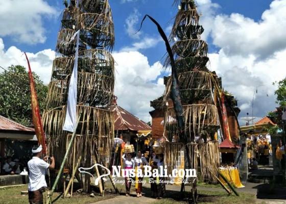Nusabali.com - setelah-18-tahun-ida-sasuhunan-melancaran-ke-pura-desa-bale-agung-buleleng