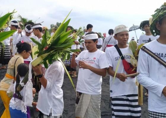 Nusabali.com - desa-pakraman-semaagung-gelar-tradisi-tektekan