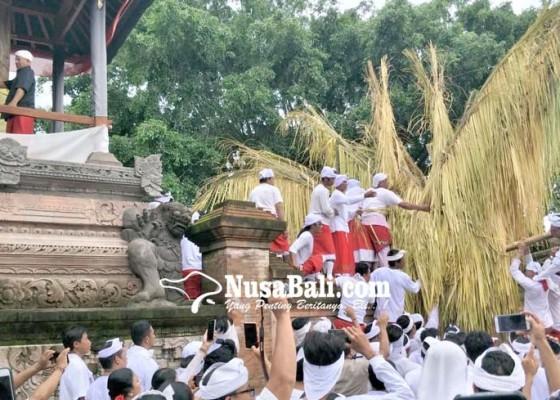 Nusabali.com - sarad-ageng-loncati-tembok-panyengker
