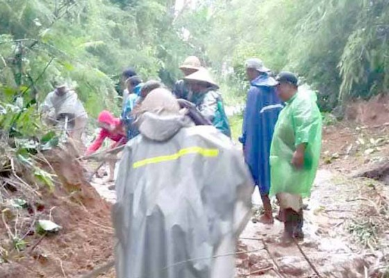 Nusabali.com - diguyur-hujan-tanah-sawah-longsor