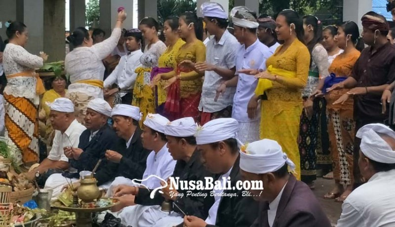 www.nusabali.com-pasutri-yang-menek-medesa-adat-diupacarai-layaknya-pengantin