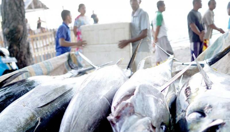 www.nusabali.com-perdagangan-ikan-tuna-stabil