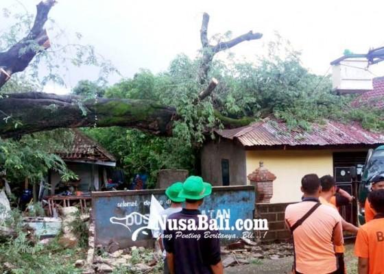 Nusabali.com - buleleng-kembali-dikepung-bencana