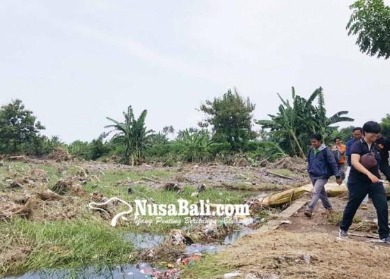 Nusabali.com - puluhan-hektare-sawah-asah-tersapu-banjir