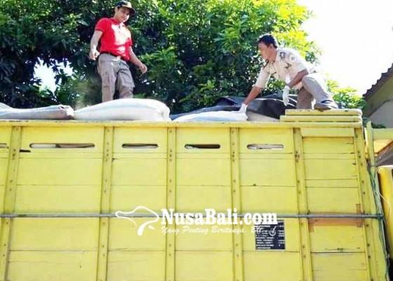 Nusabali.com - 38-ton-daging-celeng-ilegal-diamankan-di-gilimanuk
