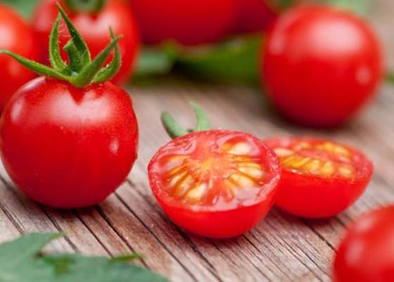 Nusabali.com - kesehatan-tomat-menjaga-tekanan-darah