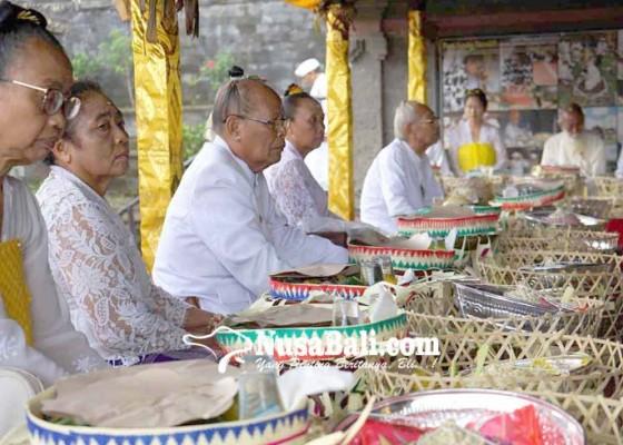 Nusabali.com - panitia-karya-panca-walikrama-gelar-rsi-bojana