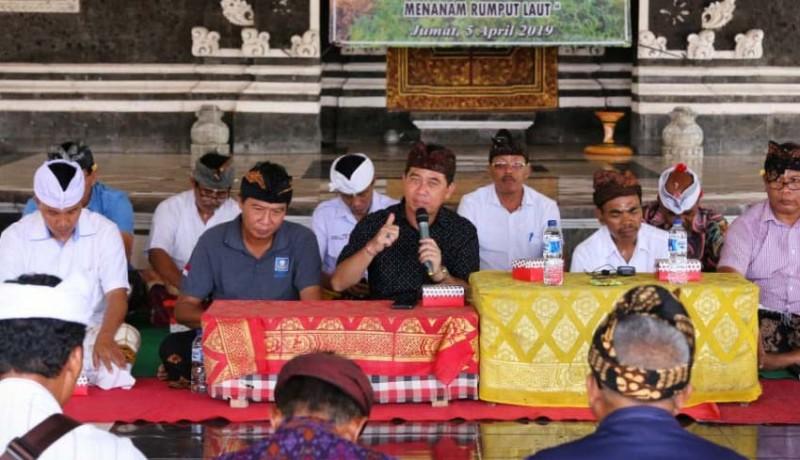 www.nusabali.com-bupati-suwirta-bangkitkan-budidaya-rumput-laut-di-nusa-penida