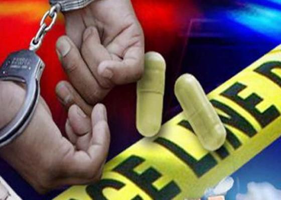 Nusabali.com - bandar-3-kg-sabu-tewas-ditembak