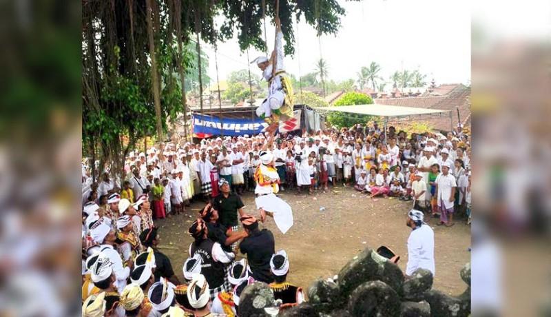 www.nusabali.com-penari-rejang-bergelantungan-di-pohon-menari-dalam-kondisi-trance