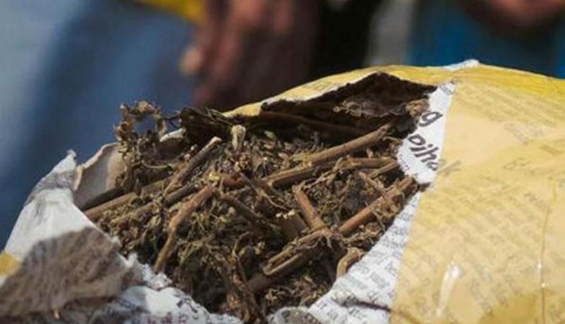 www.nusabali.com-pemilik-25-kg-ganja-sidang-perdana