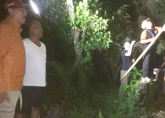 Nusabali.com - makan-ternak-ular-piton-3-meter-ditangkap
