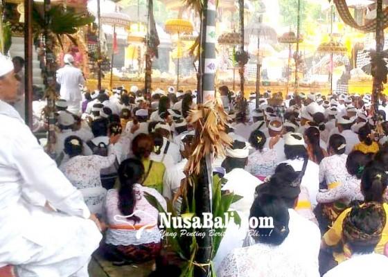 Nusabali.com - manggala-karya-berlakukan-kartu-pamedek