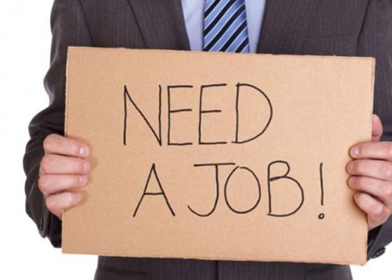 Nusabali.com - koster-diminta-seriusi-pengangguran-terdidik