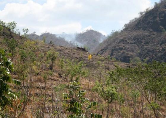 Nusabali.com - warga-dua-desa-kembalikan-hutan