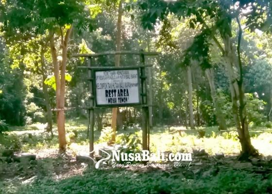 Nusabali.com - rest-area-mbah-temon-kembali-ditumbuhi-semak-belukar